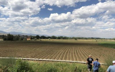 Hemp Farming Show Season Continues: Lessons from the Road