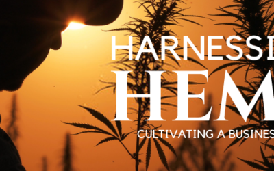 Greeley: Harnessing Hemp – Cultivating A Business